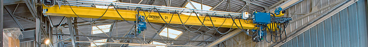 EDKE Single Girder Suspension Demag Crane